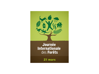 Journée international de la forêt